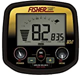 Fisher Gold Bug DP - 2